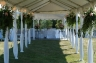 Frame Tents Image 130